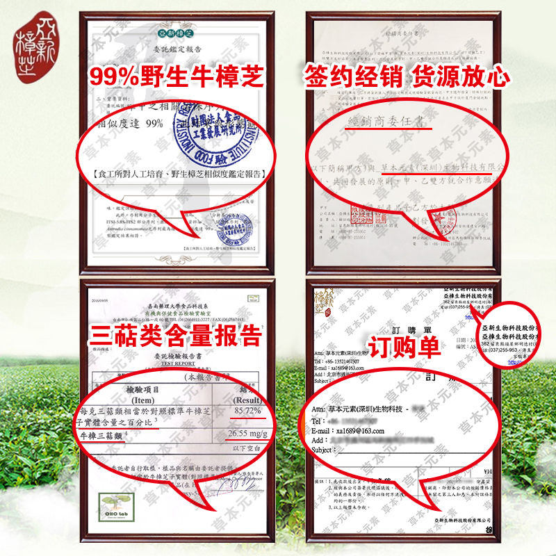 Asiago antrodia fruiting body concentrate dripping pills microcapsules wild  cattle mushroom Basswood Taiwan imported