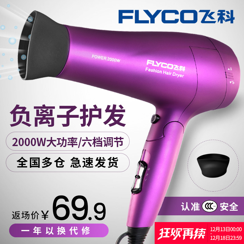 Flying Branch hair dryer home female male barber shop wind small high power negative ion does not hurt hair mute hair dryer