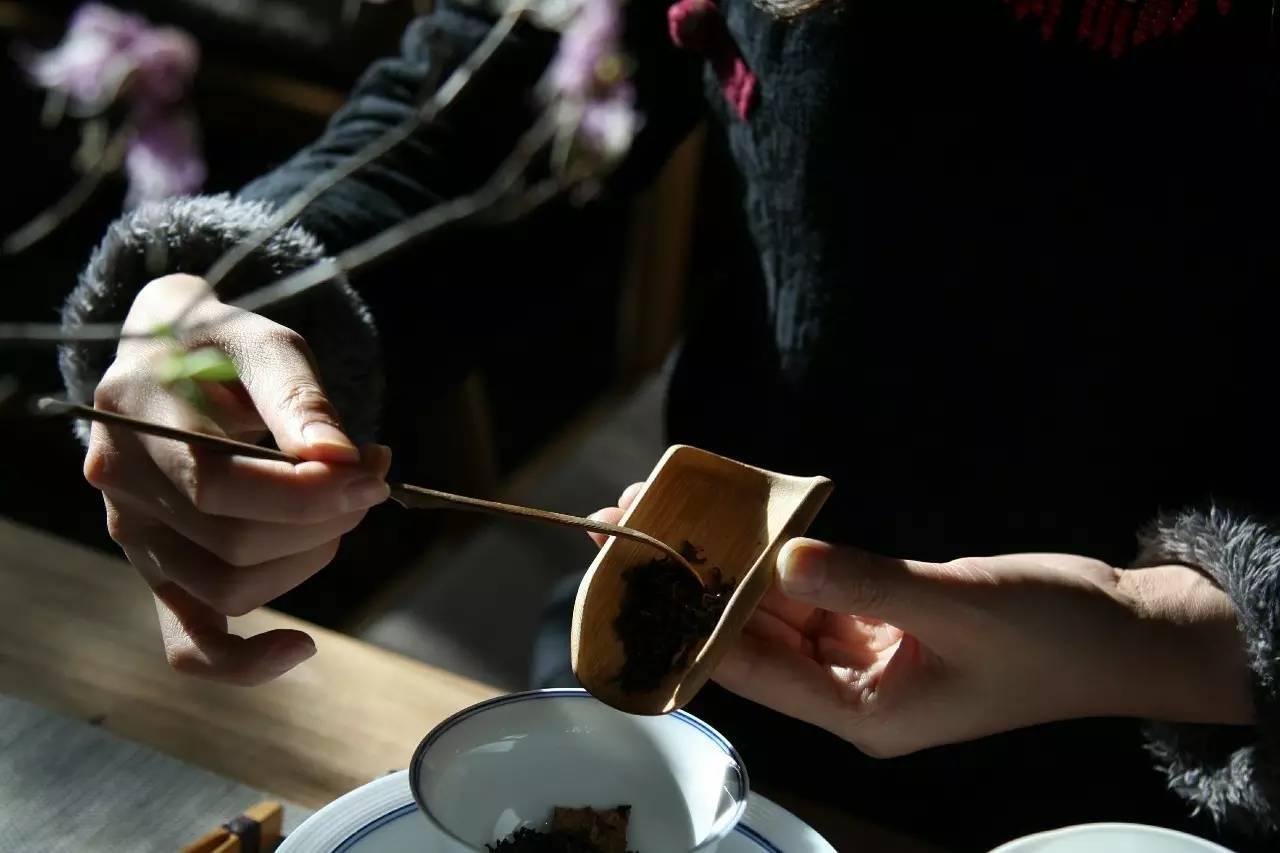 学到撬茶小技巧,助您轻松解开普洱茶!