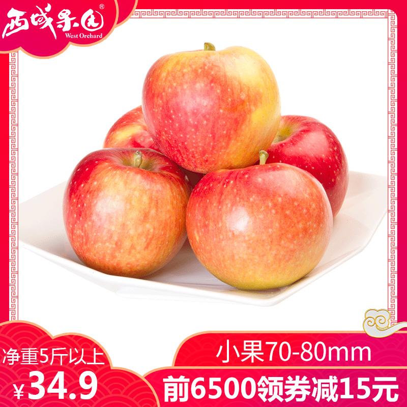 新疆阿克苏冰糖心苹果小果5斤红富士丑苹果新鲜水果整箱批发包邮_天猫超市优惠券