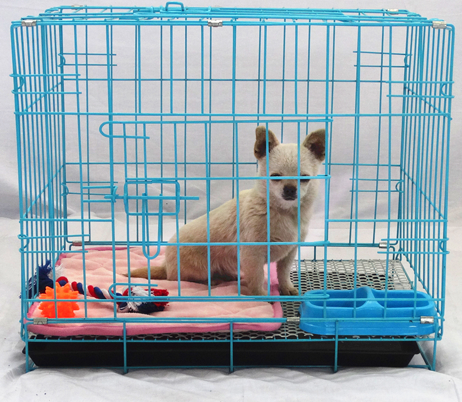USD 14.29] Dog cage kennel small medium large dogs Dog cage Teddy ...