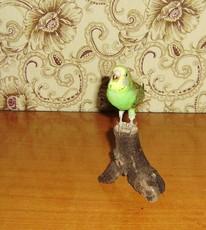 аксессуар Таксидермист образца попугай, птица Солитер,