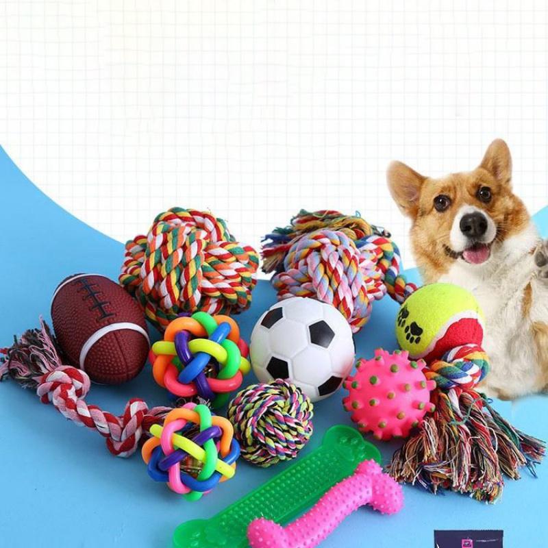 狗狗玩具惨尖叫鸡发声小狗玩具耐咬磨牙泰迪猫咪狗狗用品宠物玩具