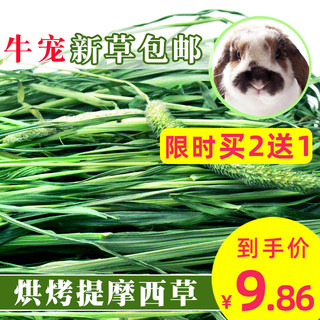 2020 dry grass hay 500g rabbit Timothy grass hay mention Chinchilla guinea pigs forage grass guinea pig food
