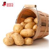 东北农家自种新鲜土豆5斤