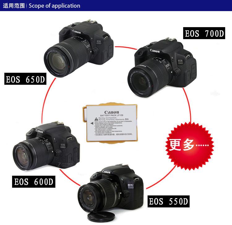 相機電池佳能EOS 700D 600D 650D 550D X4 X5 X6i單反相機LC-E8C原裝電池