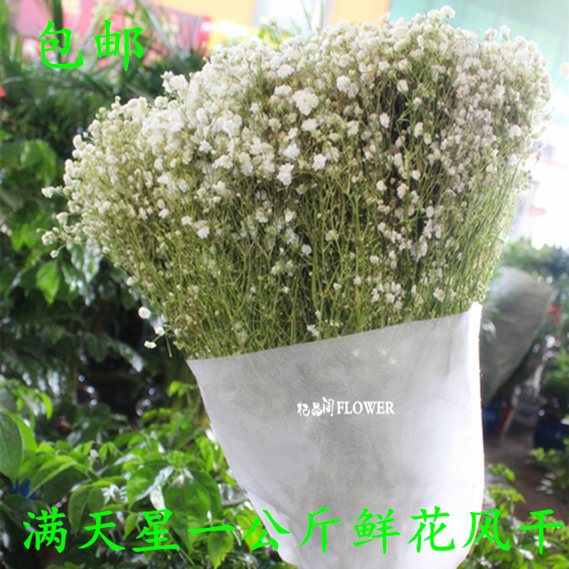 Gypsophila dried flower bouquet Yunnan natural true flower diy ...