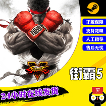 PC Chinese genuine steam game Street Fighter V Street Fighter 5 Street Fighter 5 season ticket Champion edition upgrade package