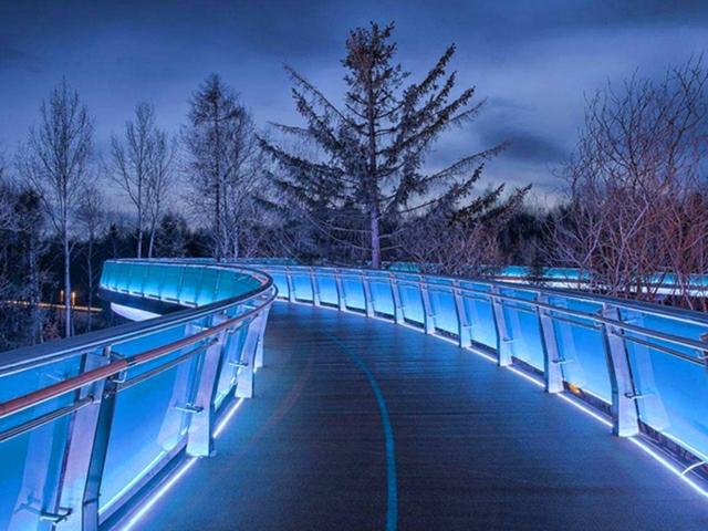 美人松空中廊桥公园