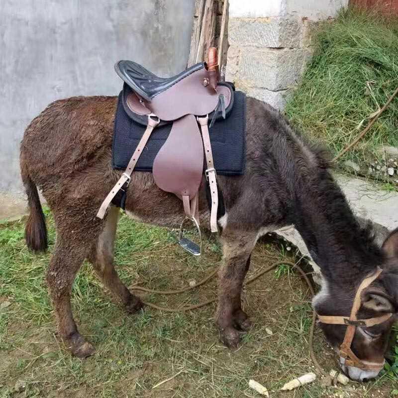 Yên xe dân tộc yên ngựa - Nguồn cung cấp ngựa & ngựa