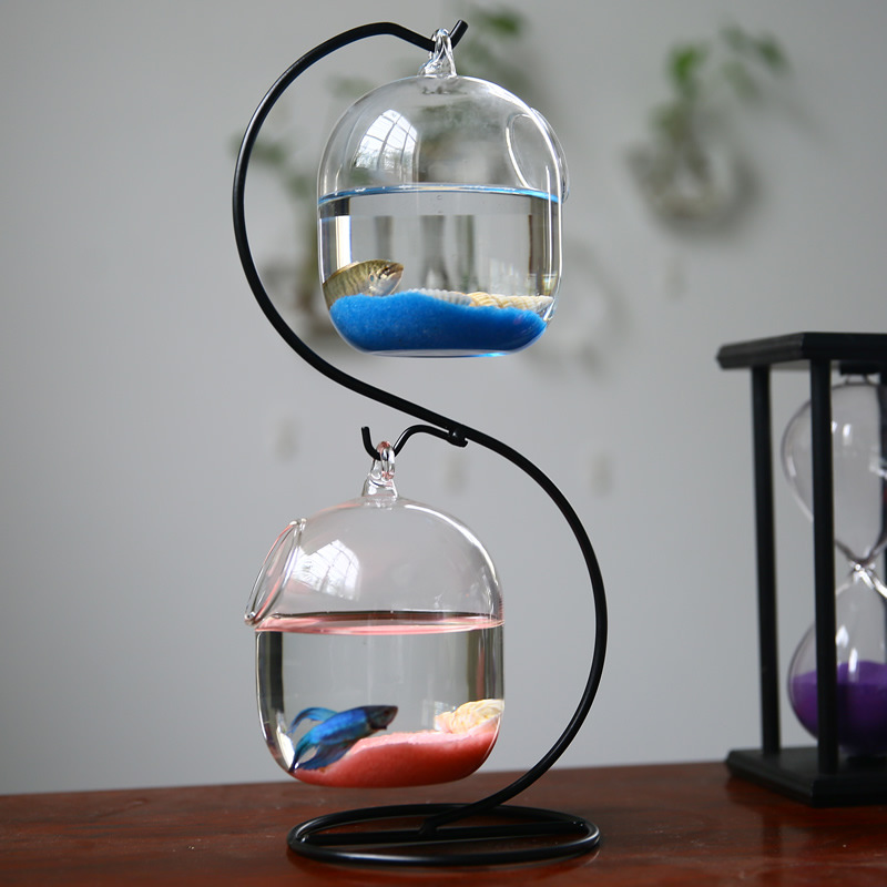 Usd creative glass bucket fish tank hanging small for Small glass fish tank