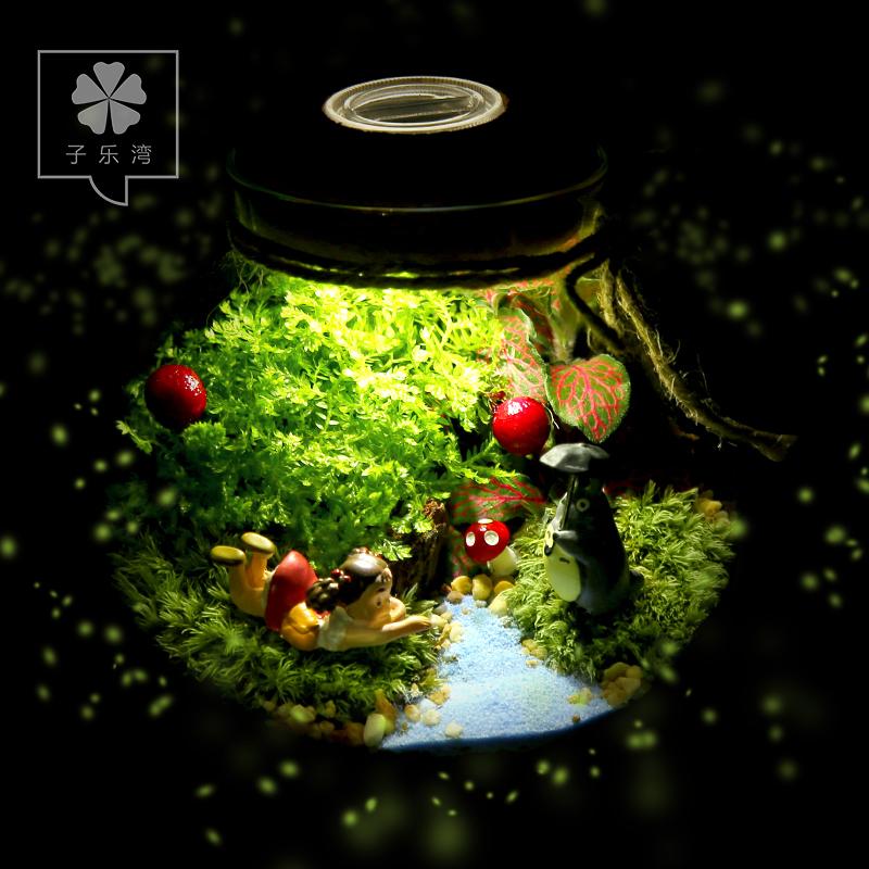 Декоративное мини-растение Tsz Lok Bay  Diy