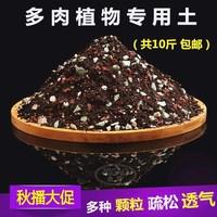 Yi высокая Садоводство мясистые для Почва сочной почвы, почва общего питания, мясистые гранулы, почва, торфяная почва. бесплатная доставка по китаю