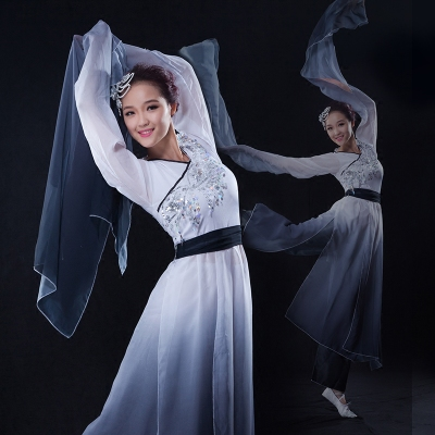 Chinese Folk Dance Costumes Watersleeve Dance Dress Ink Classical Dance Performance Dress Female Dance Practice Dress Adult Zaiwei Dance Modern Dance