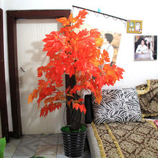 Simulated maple, false red maple, potted living room, large plant, decorative plastic, artificial flowers, simulated green trees