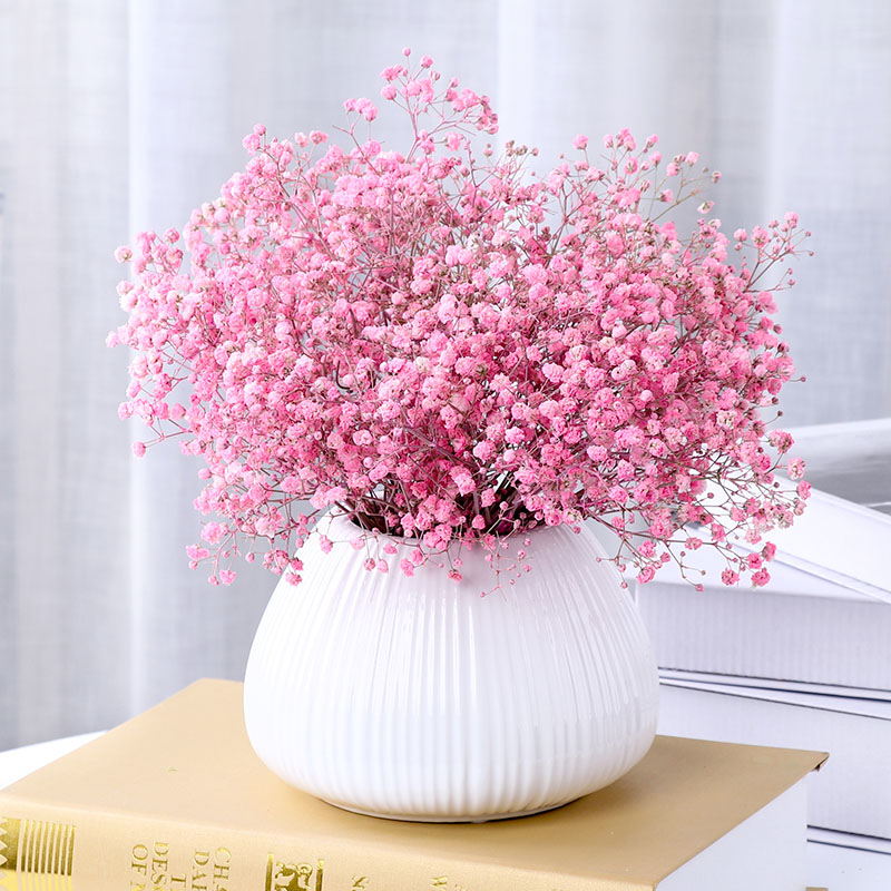 Gypsophila dried flowers on the catty sold wholesale with vases ...