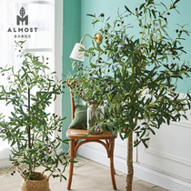 Olive Tree potted green planting simulation small plant bonsai living room Decoration