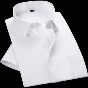 莱斯华菲商务短袖衬衫