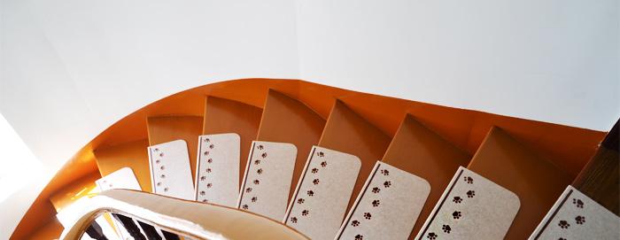 楼梯垫实拍图_05