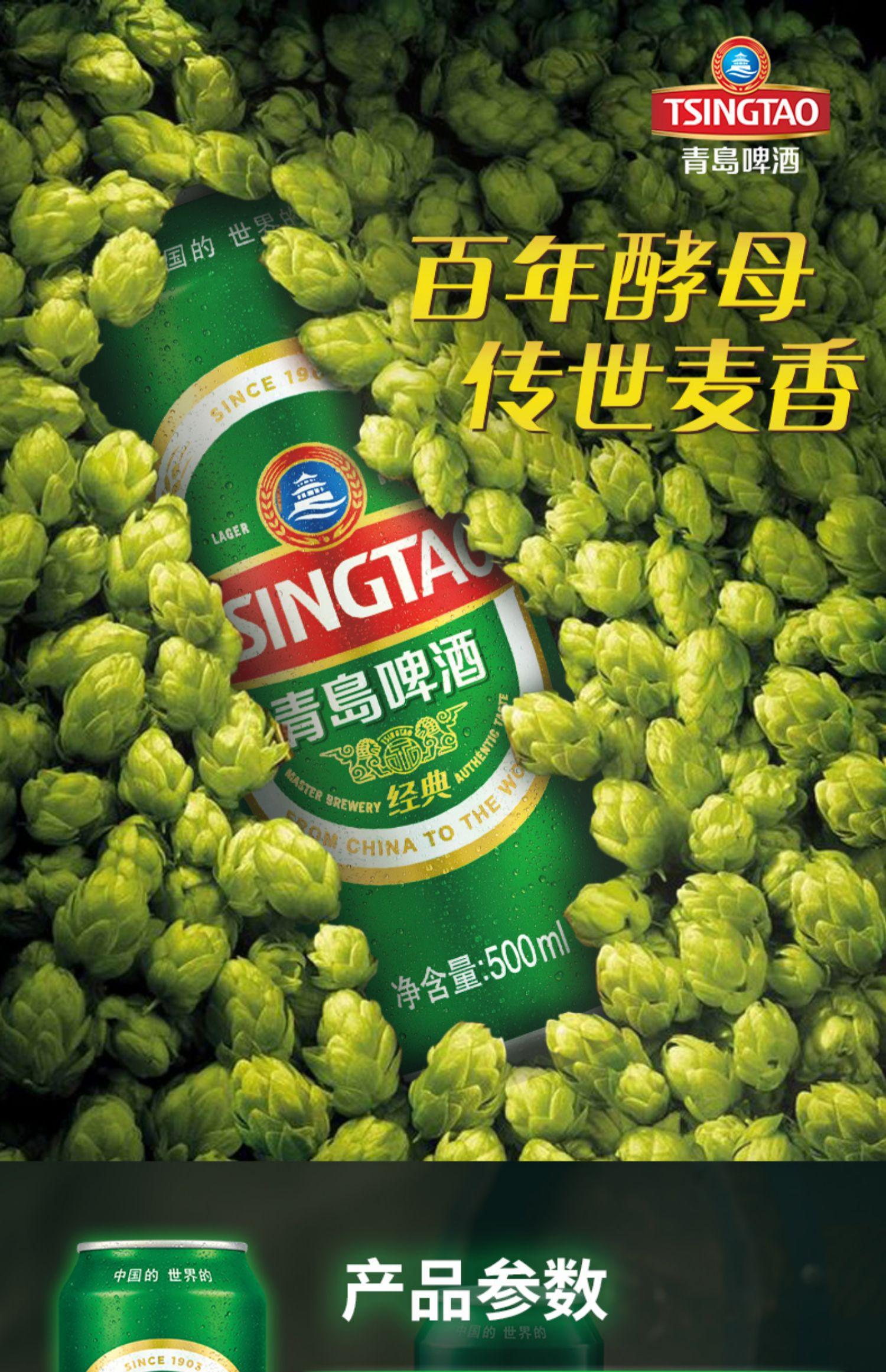 青岛经典500ml*24听生产直营啤酒1