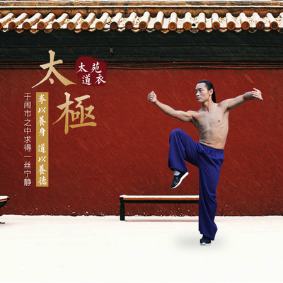 Wudang Taiji Lantern Pants, High-grade Flax Taiji Pants, Wushu Performance Clothes, Kungfu Pants, Morning Exercise Clothes for Men and Women