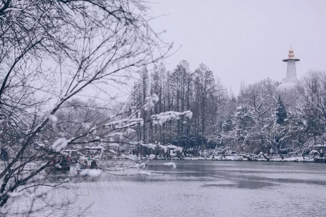 喜提2020第一场雪!雪后的江南美爆了46