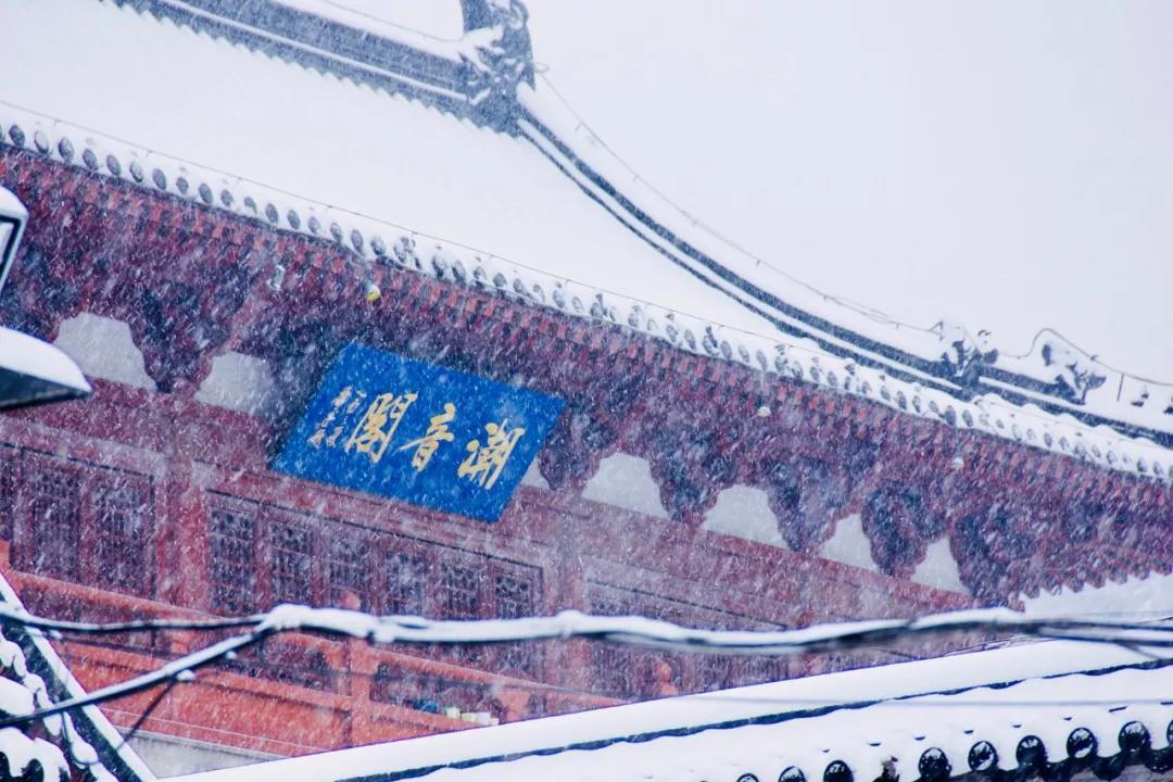 喜提2020第一场雪!雪后的江南美爆了7