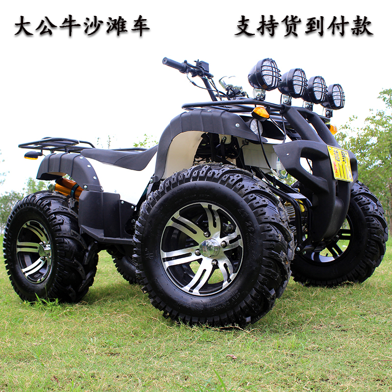 ATV four-wheel off-road motorcycle 125-250cc gasoline water