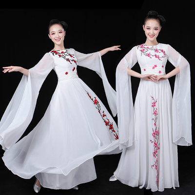 Chinese Folk Dance Costume Chorus dress, long skirt, folk music, classical dance costume, Chinese kite costume, female adults