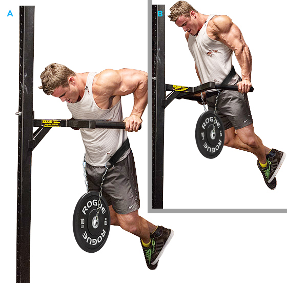 da634579732 Weight-bearing belt pull-ups heavier thick chain barbell strength training  parallel bars arm flexion fitness weight-bearing equipment