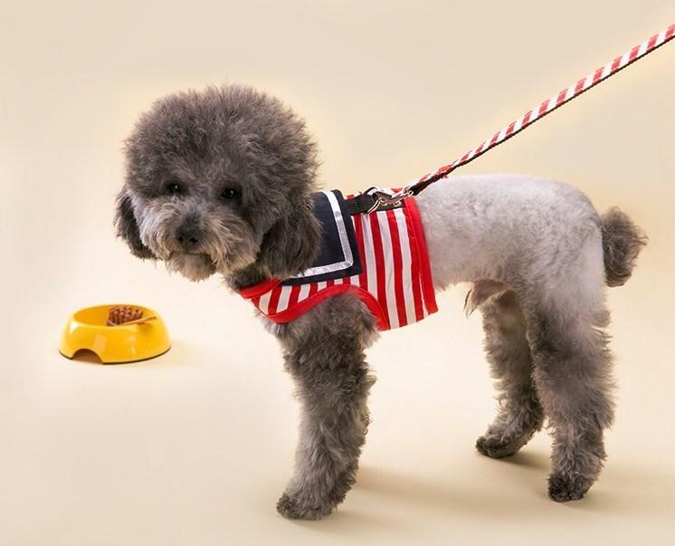 海军背心式牵引绳水手服狗狗牵引带胸背带狗绳子狗背带泰迪栓狗绳
