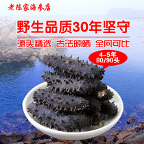 Changhai Dry sea cucumber Dry goods sowing wild 50 8090 seepage can