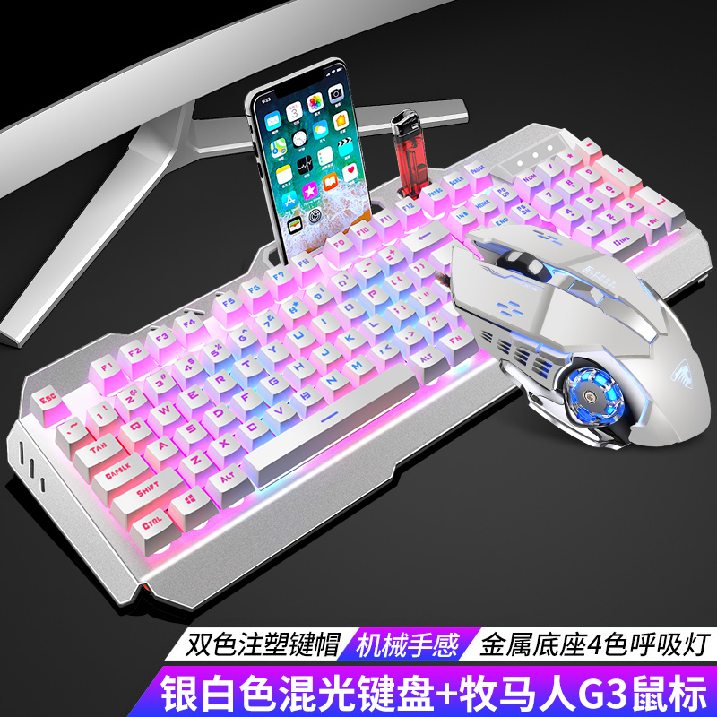Silver-white Mixed Light Keyboard + Wrangler Mouse