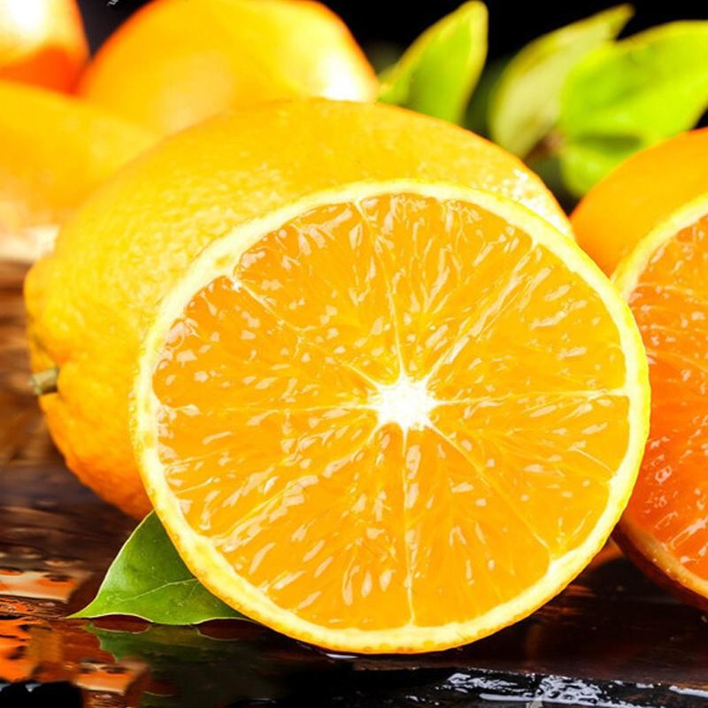 湖北秭归脐橙现摘橙子5斤新鲜橘子水果当季整箱精品大果甜橙批发