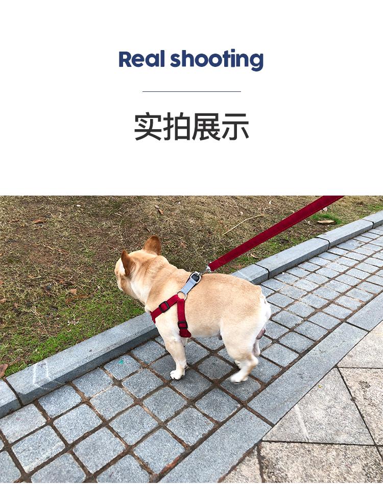 可调节防咬断中小型犬遛狗狗牵引绳子背心式胸抱婴袋法斗牛泰迪柯基详细照片