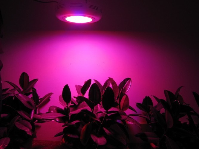 Инвентарь для сада IT  90W 90*1WLED GROW LIGHTING