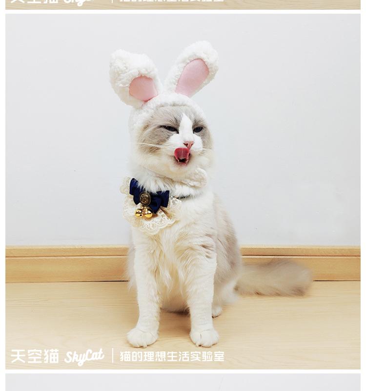 天空貓 原創設計兔耳朵貓頭套狗狗頭飾寵物拍照網紅可愛貓咪帽子