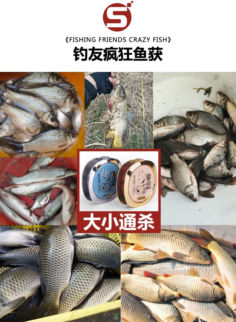时代钓圣鱼线超强拉力超柔软钓鱼线主线子线日本进口正品尼龙渔线详细照片