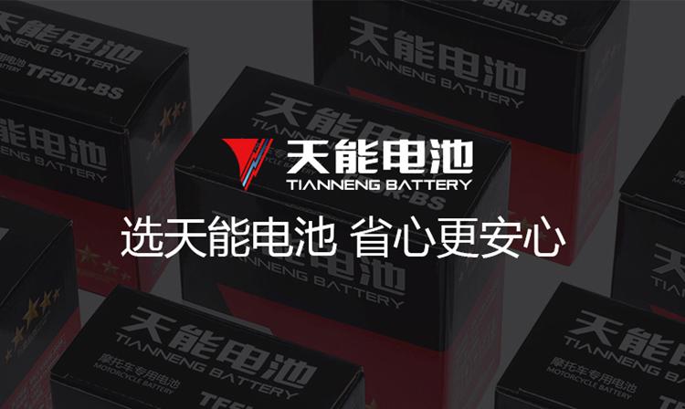 天能电子檯秤电池蓄电池专用电瓶童车通用电池详细照片