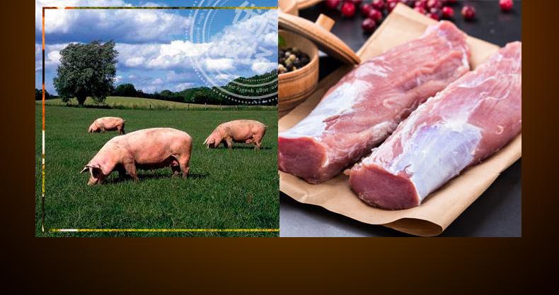 阿雷食品 哈尔滨红肠 10根/900g 肉含量≥90% 图3