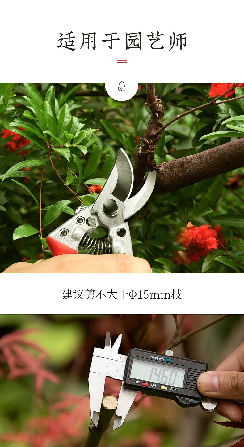 张小泉园艺剪刀果树树枝修枝剪刀园林盆景绿化修剪工具剪子详细照片