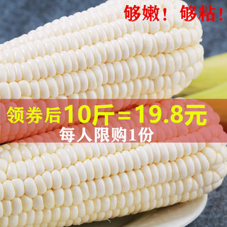 Glutinous corn on the cob sticky glutinous glutinous bracts coarse grains and vegetables