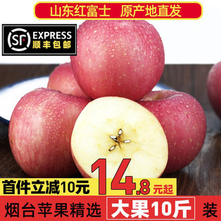 Yantai Red Fuji Apple Qixia Fruit 10 Ten Crispy Sweet Catties Shandong Seasonal Box Fresh Seasonal Flat Fruit