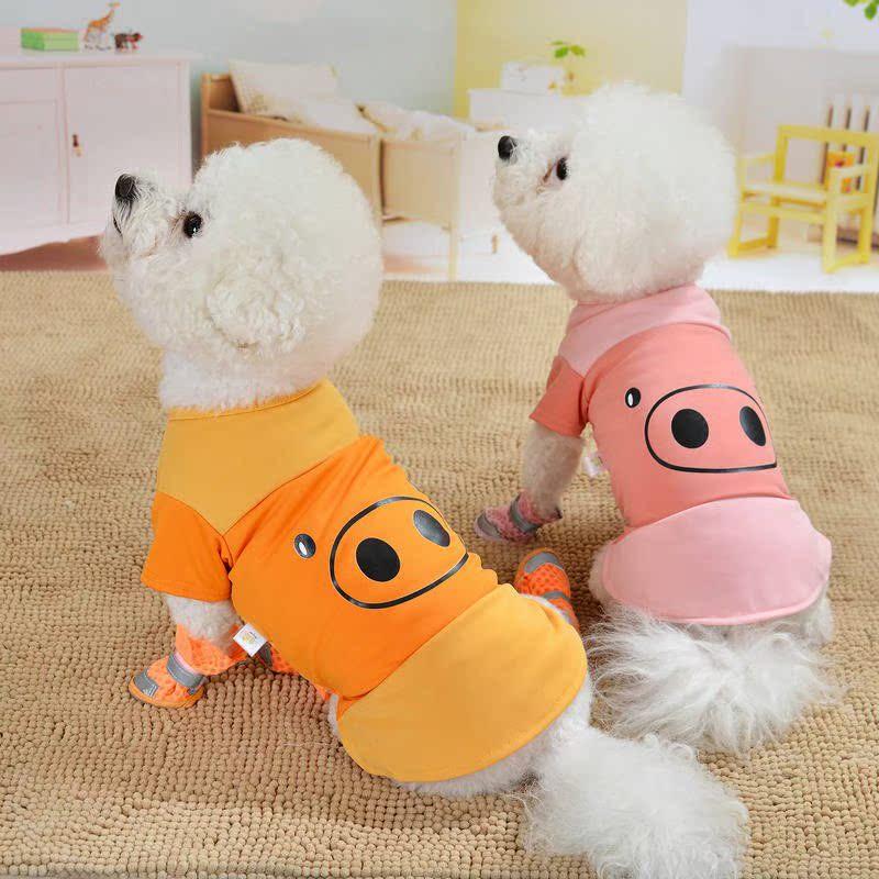 Chó chó quần áo mô hình mùa xuân và mùa thu hơn chó Xiong Pomeranian tách trà nhỏ phần mỏng mèo hai chân quần áo thú cưng - Quần áo & phụ kiện thú cưng