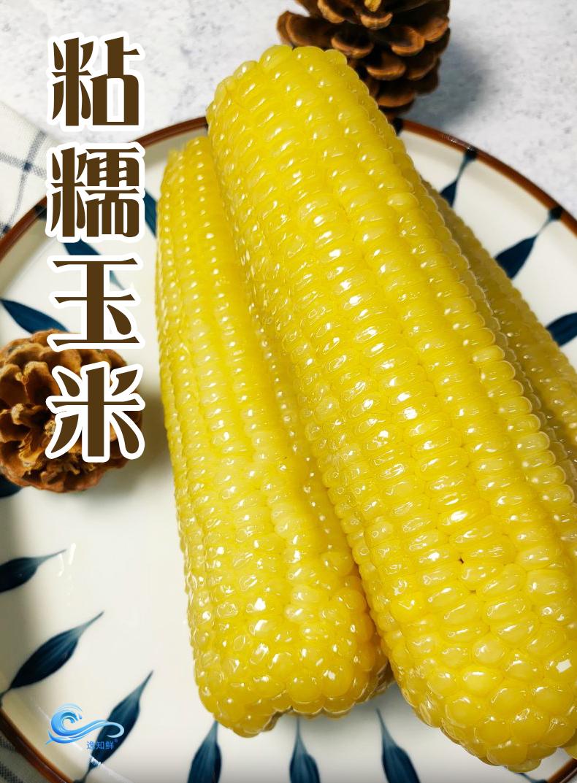 东北即食新鲜甜糯玉米棒8根