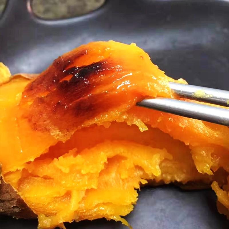大连地瓜红心流油蜜薯5斤新鲜地瓜山芋蔬菜烤红薯紫薯烟薯现挖