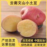 【喵鲜记】云南文山红皮土豆5斤 券后12.8元包邮