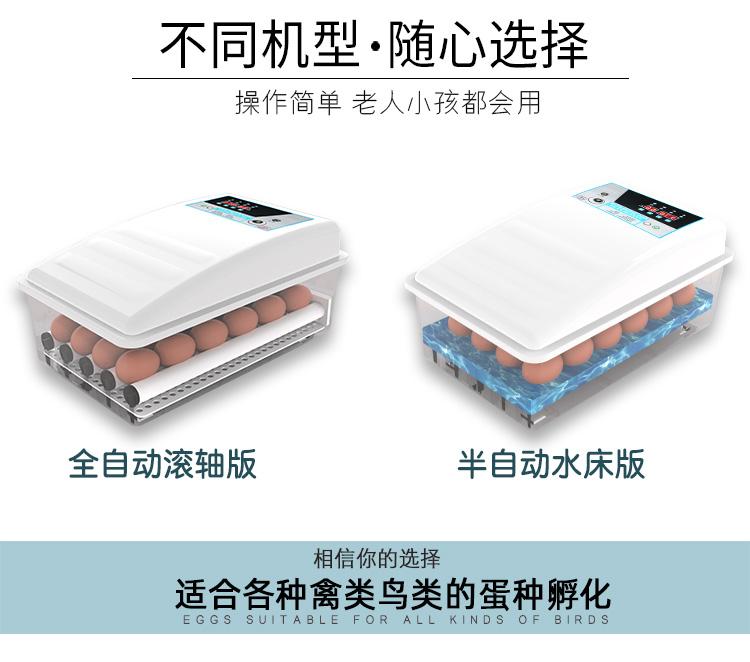 小鸡孵化器小型家用孵化机全自动智能家用型孵蛋器鸡苗水床孵化箱详细照片