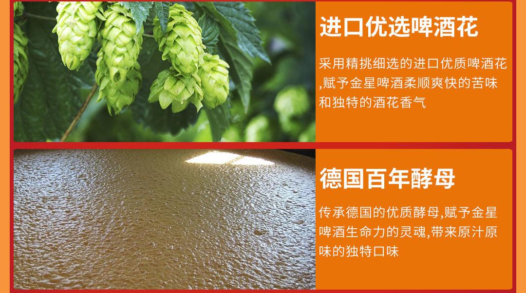 金星啤酒 10度1982原浆精酿 大红罐  500ml*12听 图5