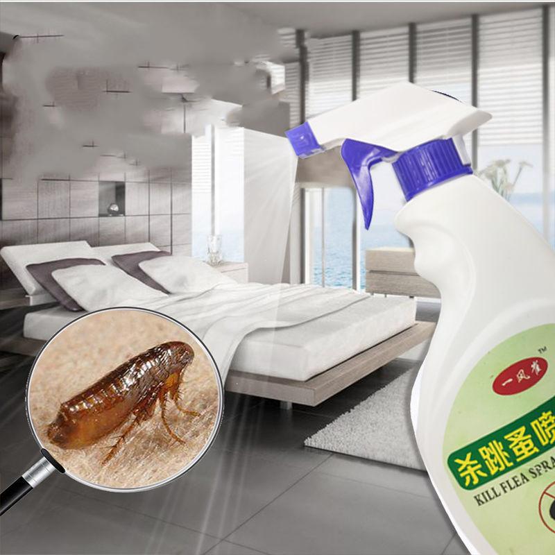 跳蚤药家用床上人用儿童灭除跳蚤虱子宠物狗狗猫咪蜱虫喷雾杀虫剂